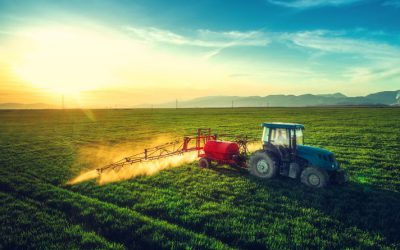 A call for climate-smart agricultural policies