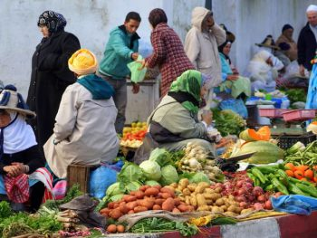 Thinking small to ensure global food security