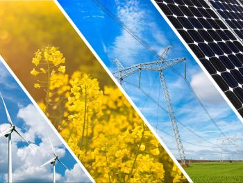 The finance risks and opportunities of decarbonization