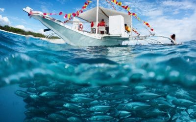 Policy advice informed by evolutionary fisheries science